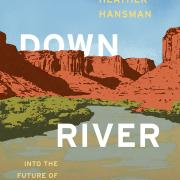 Book cover of downriver