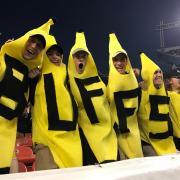 cu bananas