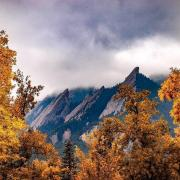 Yellow trees in front of the Flatirons
