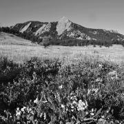 Flatirons in black and white