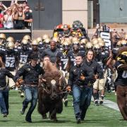 Ralphie Run at a football game