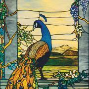 Longs Peacock, 2003