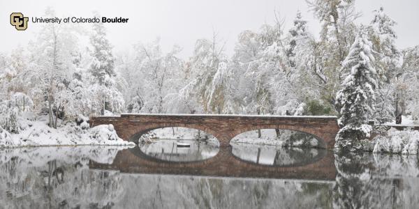 Varsity Pond in the snow