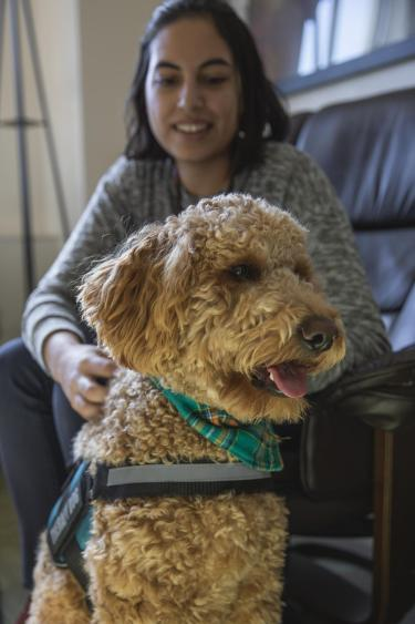 Toby the therapy dog
