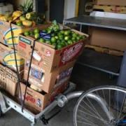 A bicycle trailer loaded with donated produce.