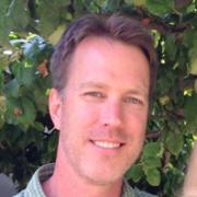 Steve Wehrend headshot
