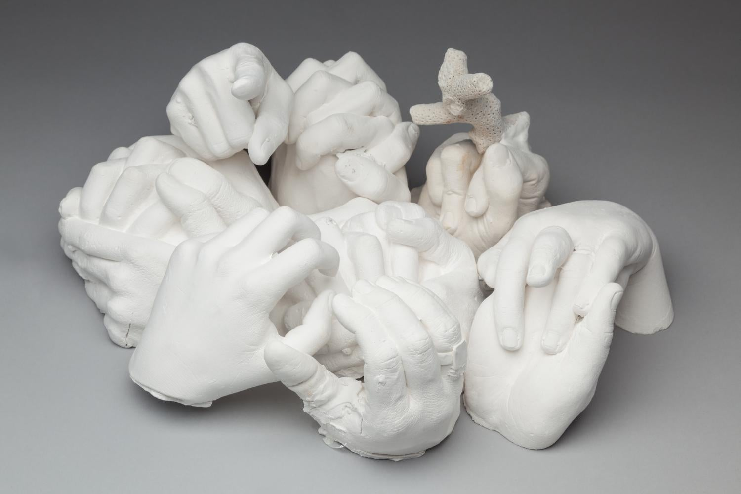Plaster of paris castings of human hands, coral, and cauliflowers placed in front of a grey background.