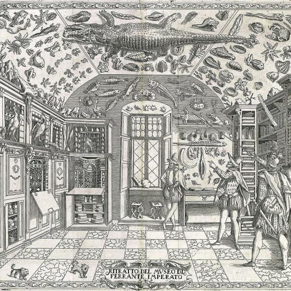 A Renaissance era engraving