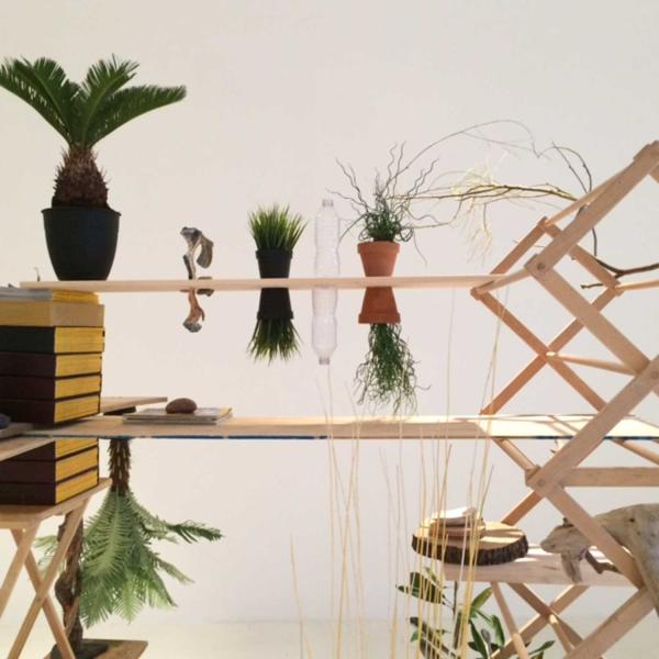 plants on shelves as a part of a larger installation
