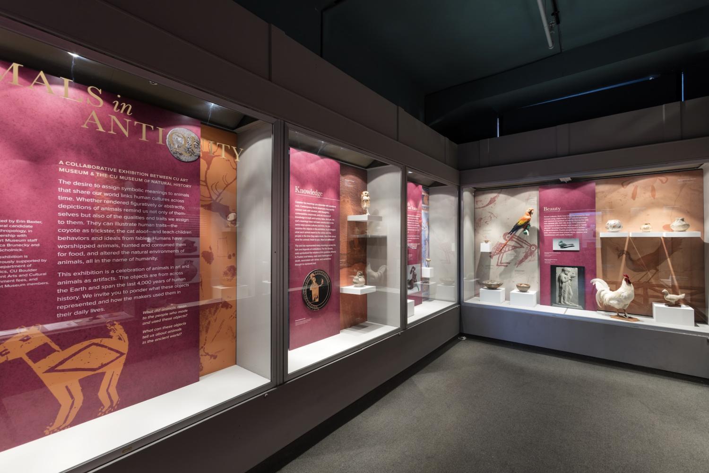 photo of exhibition installation