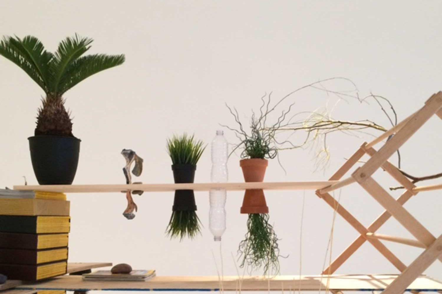 Wooden structure with plants on top and mirror images below