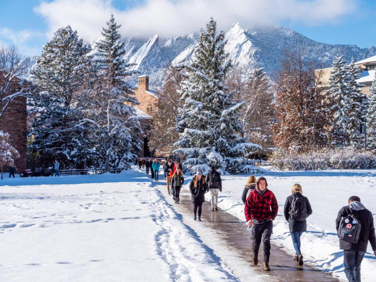snowy day walking faculty fellows