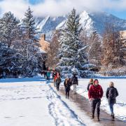 faculty fellows snowy day walking