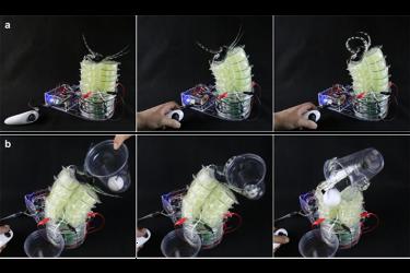 Christoph Keplinger soft robotics