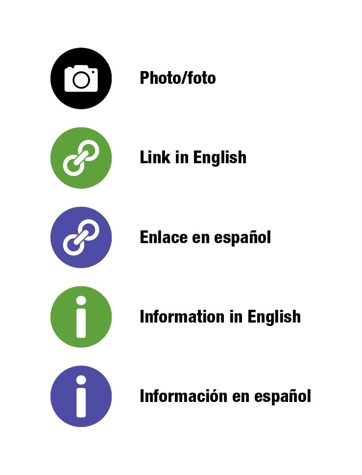 Black camera = camera, green link = english, purple link = Spanish, green I = English, purple I = spanish