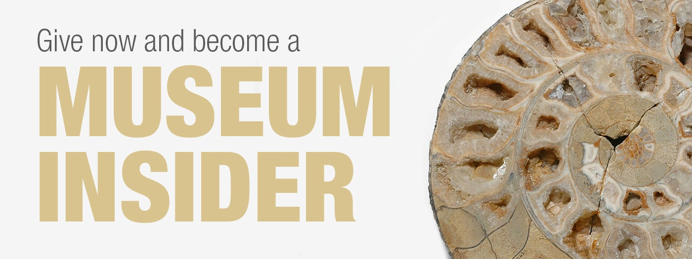 Give now and become a museum insider