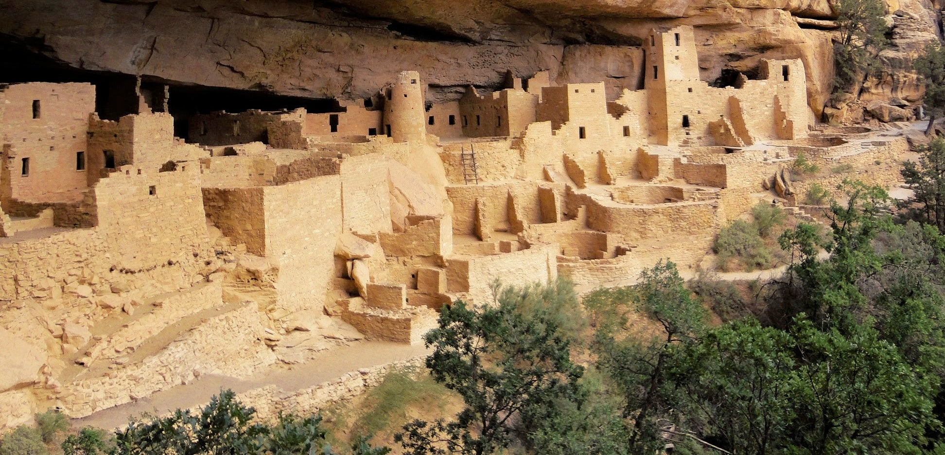 Cliff dwellings with trees