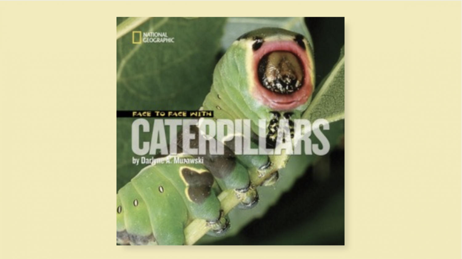 Face to Face with Catepillars book cover