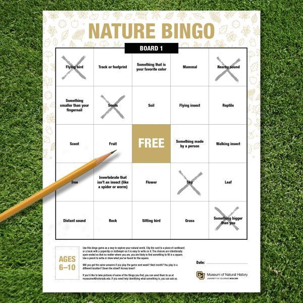 bingo board with pencil