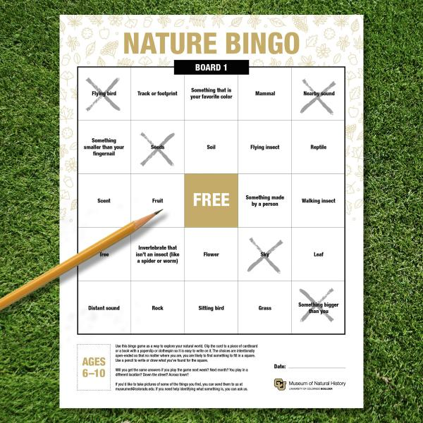 bingo card with pencil