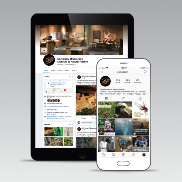 ipad and phone with social media feeds