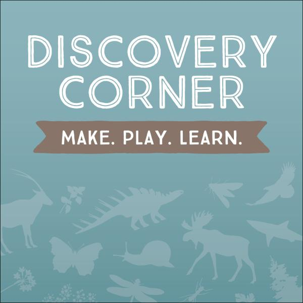 Discovery Corner: Make, Play, Learn.