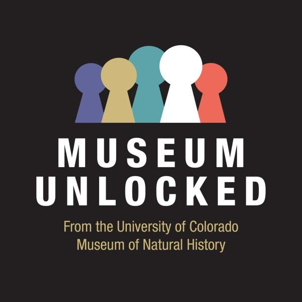 Museum Unlocked