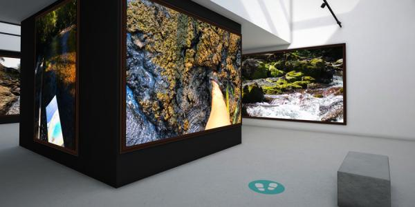 Virtual museum environment with images hanging on walls