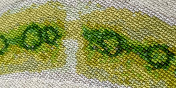 Embroidery with green algae shapes