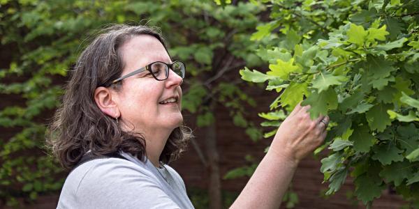 woman looking at tree leaf