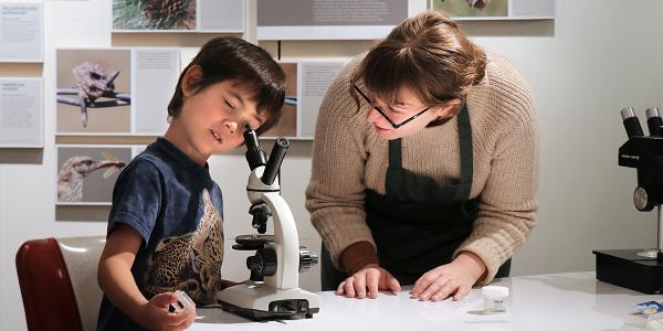 child with volunteer looking through microscope