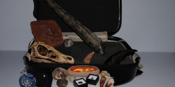 Dinosaur outreach kit