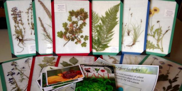 Plant outreach kit