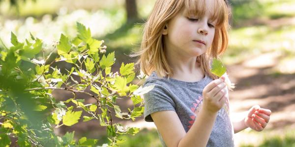 Girl looking at leaf