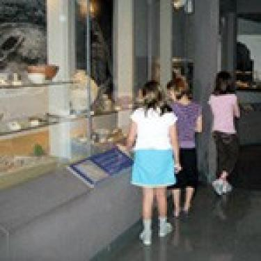 Kids looking at an anthropology exhibit