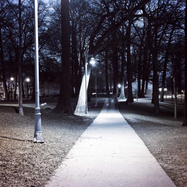 A path at night