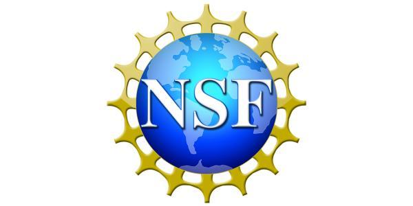 NSF logo thumbnail