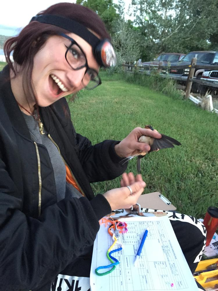 McCahill poses with a barn swallow.