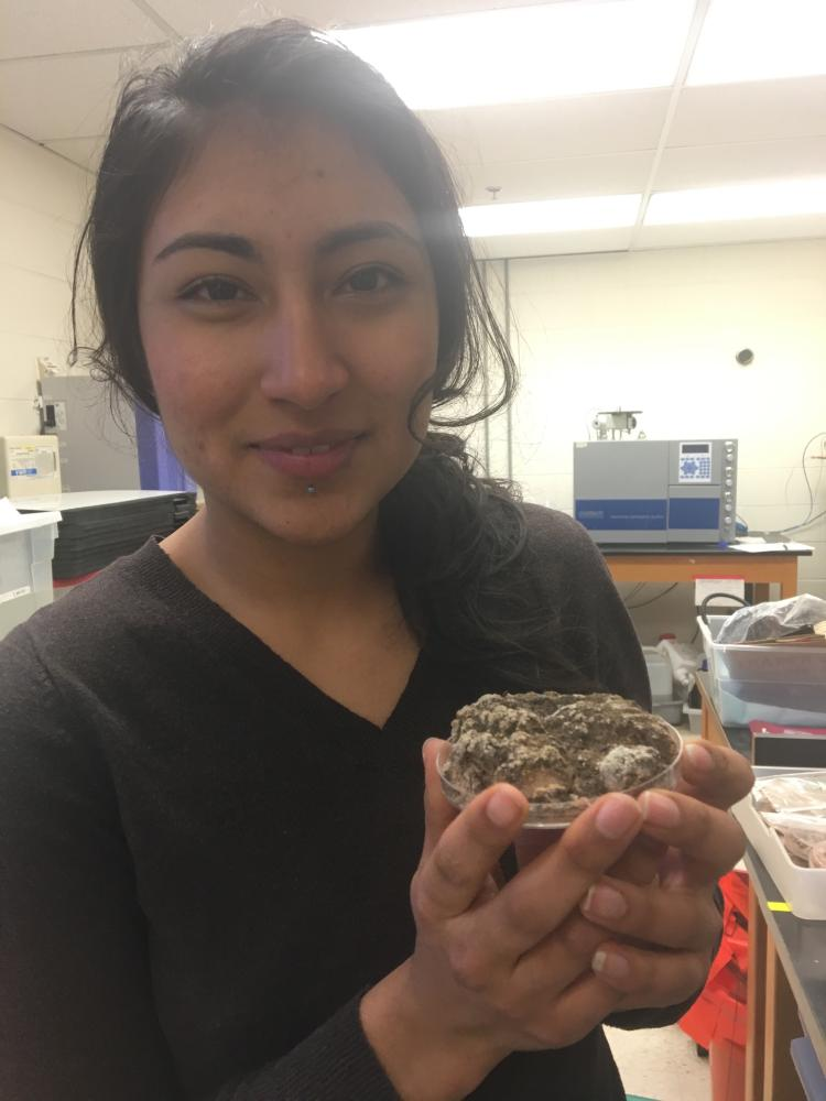 Lopez shows off a sample of biological soil crust.