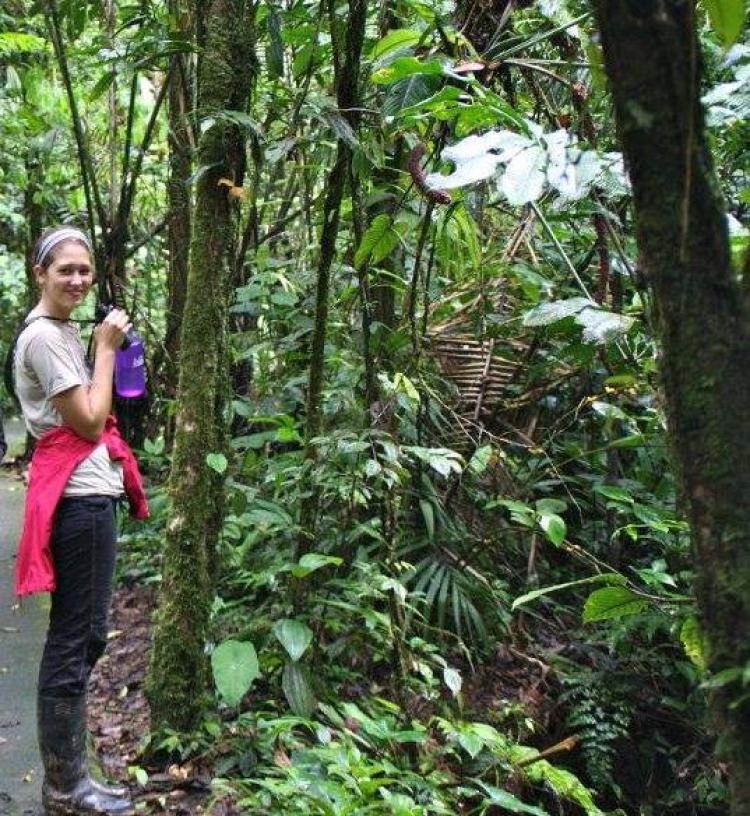 Arcuri in a rainforest.