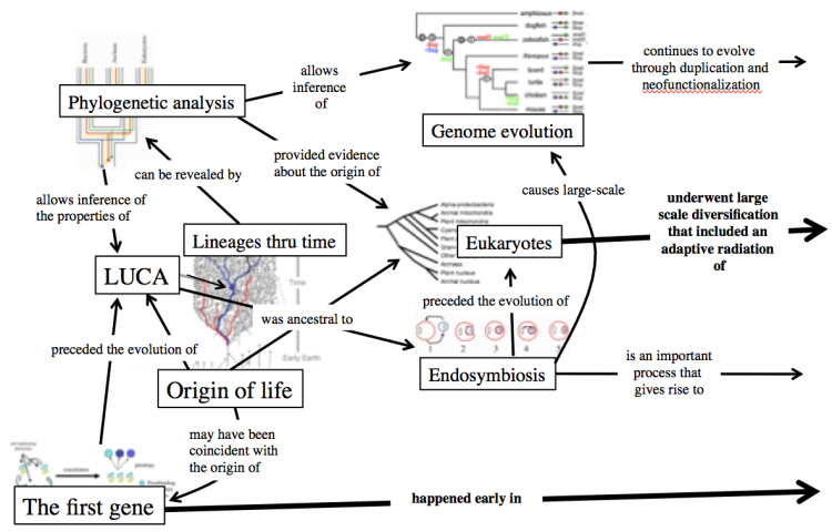 Portion of a concept map