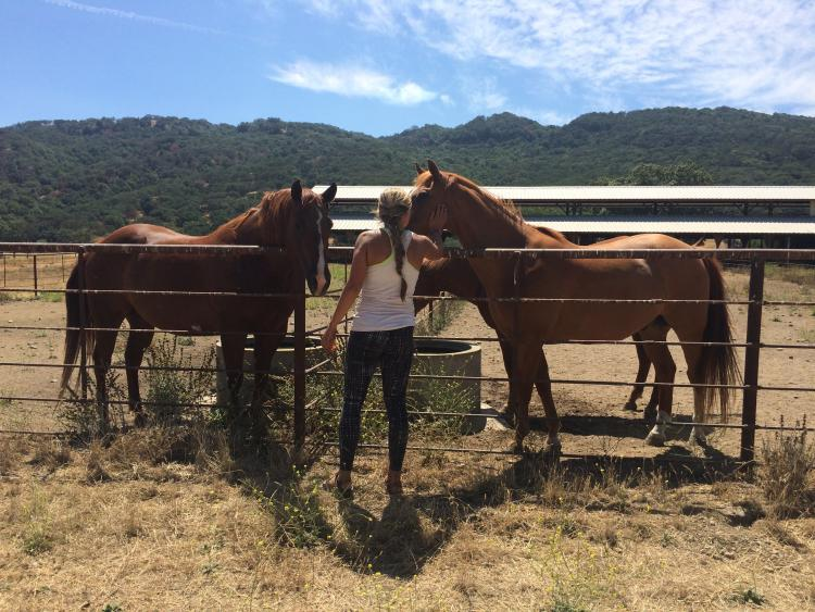 Meg at UROP location with two horses