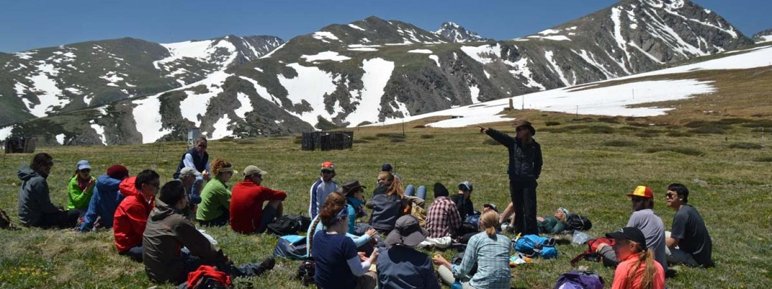 Researchers gather on Niwot Ridge