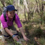 Thumbnail of Erin Polka working in the woods.