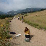 Evolution students studying sunflower seeds in front of the Flatirons