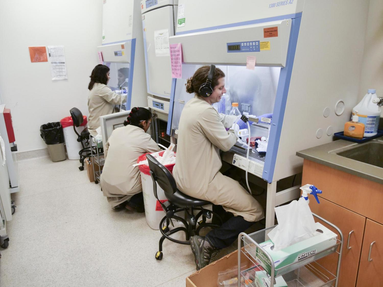 lab members working in fume hoods