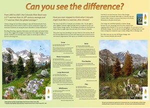 Can You see the Difference Poster p2