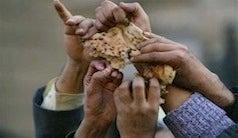 Food Scarcity