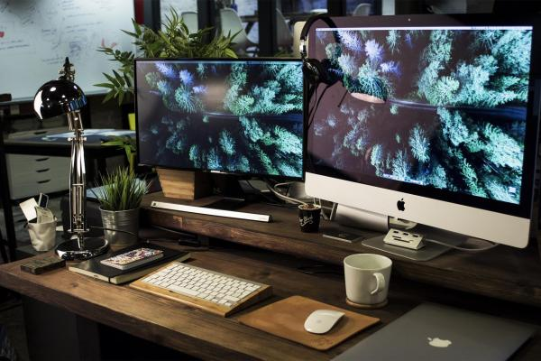 computer screens with photos of plants on them