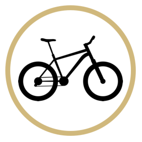 Rent a Buff Bike